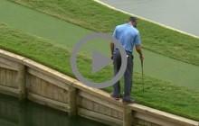 гольфист golf
