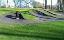 гольф-поле, golf